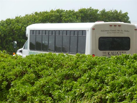 photo of The Kauai Bus